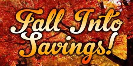 Image result for fall into savings